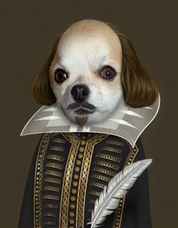 Shakespeare (Pets Rock) by Takkoda