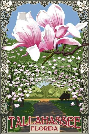 https://imgc.allpostersimages.com/img/posters/tallahassee-florida-magnolia-trees_u-L-Q1GQLVA0.jpg?p=0