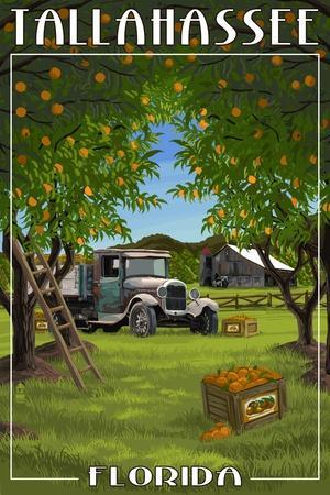 https://imgc.allpostersimages.com/img/posters/tallahassee-florida-orange-grove-and-truck_u-L-Q1GQLKW0.jpg?p=0