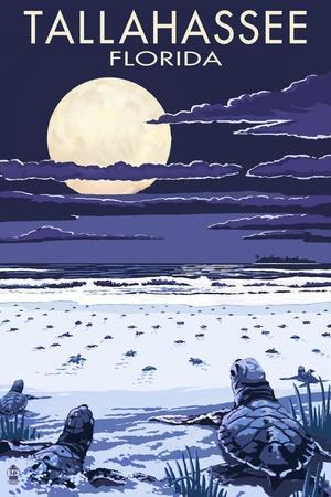 https://imgc.allpostersimages.com/img/posters/tallahassee-florida-sea-turtles-hatching_u-L-Q1GQOY20.jpg?p=0