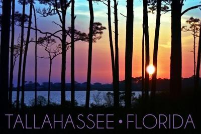 https://imgc.allpostersimages.com/img/posters/tallahassee-florida-sunset-and-silhouette_u-L-Q1GQLLR0.jpg?p=0