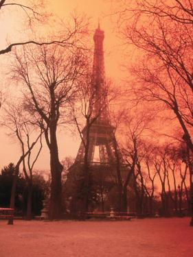 Eiffel Tower, Paris, France by Tamarra Richards