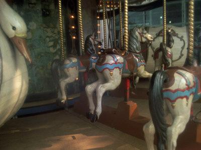 Old Carousel Horses and Duck, Paris, France