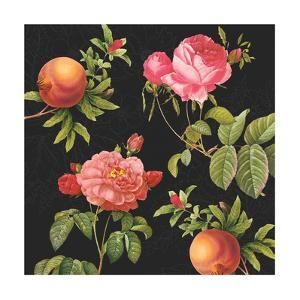 Pomegranates and Roses by Tammy Apple