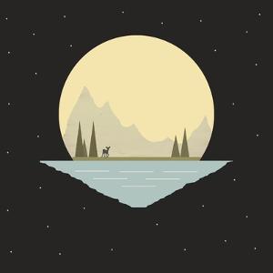 Nighttime Frolic by Tammy Kushnir