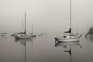 Across the Lake - BW by Tammy Putman