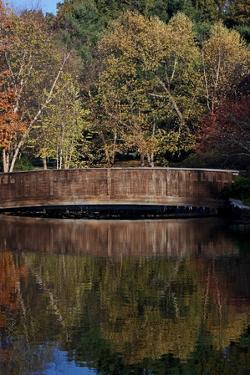 Bridge in Fall I by Tammy Putman