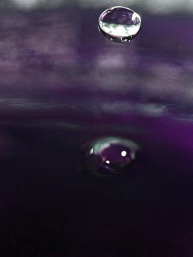 Grape Drink Drop IV by Tammy Putman