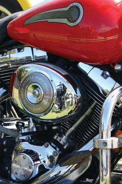 Red Motorcycle by Tammy Putman