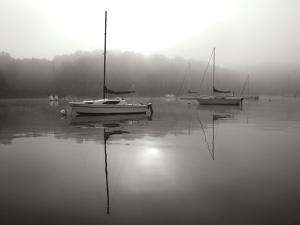 Red Sail - BW by Tammy Putman