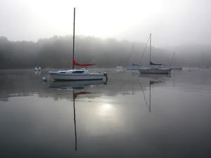 Red Sail by Tammy Putman