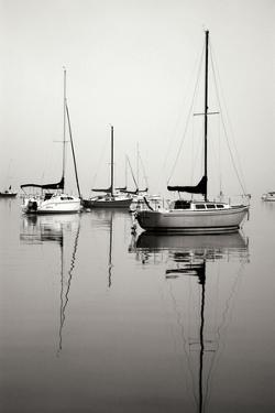 Red Sailboat I - BW by Tammy Putman