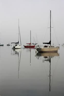 Red Sailboat I by Tammy Putman