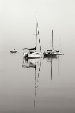 Red Sailboat II - BW by Tammy Putman