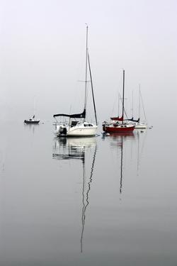 Red Sailboat II by Tammy Putman