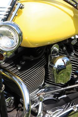 Yellow Motorcycle by Tammy Putman