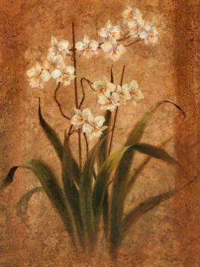 Orchid Study by Tan Chun