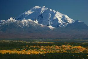 Mt Drum in Autumn by Tan Yilmaz