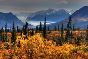 Taiga, Glacier, and Chugach Mountains by Tan Yilmaz