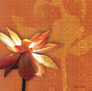 Efflorescence I by Tandi Venter