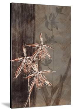 Orchid Sketch II by Tandi Venter