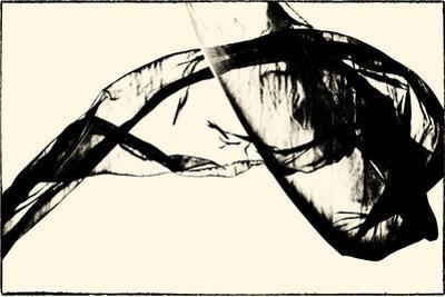 Silk Ink V