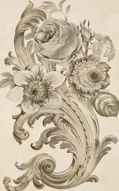 Baroque Blooms by Tania Bello