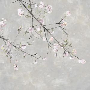 Blossom Spray IV by Tania Bello