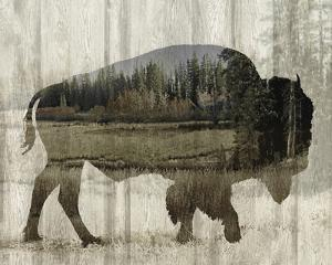 Camouflage Animals - Bison by Tania Bello