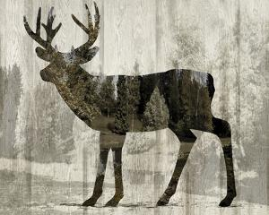 Camouflage Animals - Deer by Tania Bello