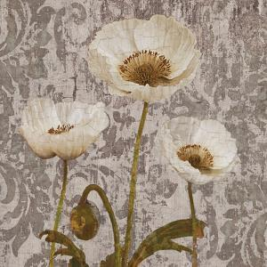 Damask Blooms IV by Tania Bello