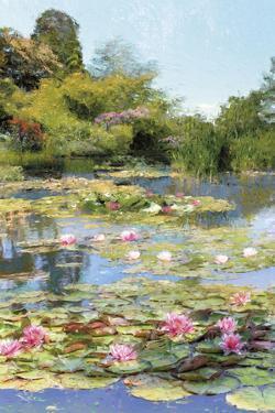Lotus Lagoon by Tania Bello
