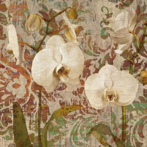 Orchid Crackle II by Tania Bello