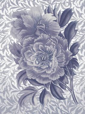 Rosa Dorada - Indigo by Tania Bello