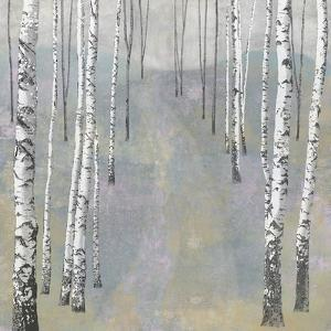 Silver Trees Path II by Tania Bello