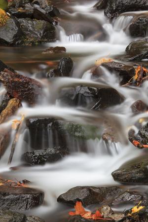 https://imgc.allpostersimages.com/img/posters/tanner-creek-columbia-river-gorge-oregon-usa_u-L-PN70XP0.jpg?p=0