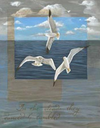 Three White Gulls II