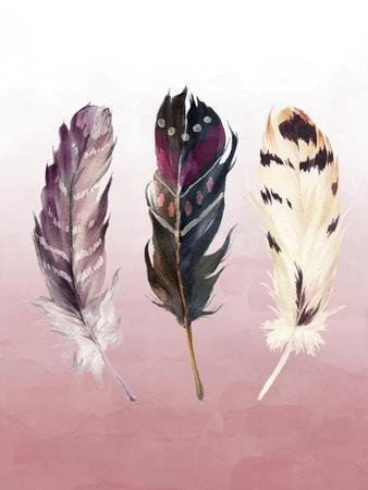 Feathers on Pink