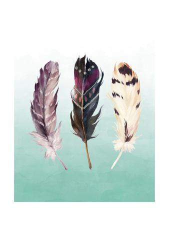 Feathers on Teal