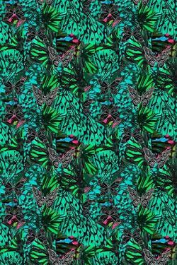 Papillon by Tara Whitehead
