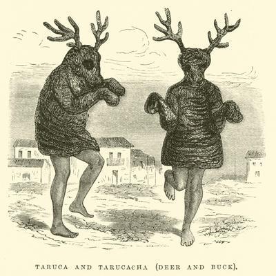 https://imgc.allpostersimages.com/img/posters/taruca-and-tarucacha-deer-and-buck_u-L-PP9VU90.jpg?p=0