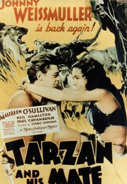 Tarzan And His Mate, 1934, Directed by Cedric Gibbons