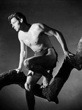 Tarzan and His Mate, 1934