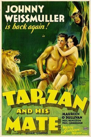 https://imgc.allpostersimages.com/img/posters/tarzan-and-his-mate-johnny-weissmuller-maureen-o-sullivan-1934_u-L-PJY7YS0.jpg?artPerspective=n