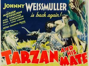 Tarzan and His Mate, Maureen O'Sullivan, Johnny Weissmuller, 1934