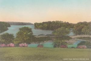 Tashwood Pond, Martha's Vineyard