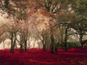Crimson Forest Floor A2 by Taylor Greene