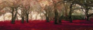 Crimson Panorama by Taylor Greene