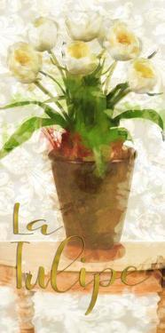La Tulipe by Taylor Greene