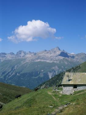 A Cow Herder's Mountain Hut High in the Swiss Alps by Taylor S. Kennedy